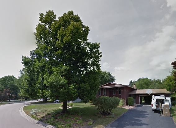 Nature's touch did this tree service in Chanhassen for a happy customer at their working space